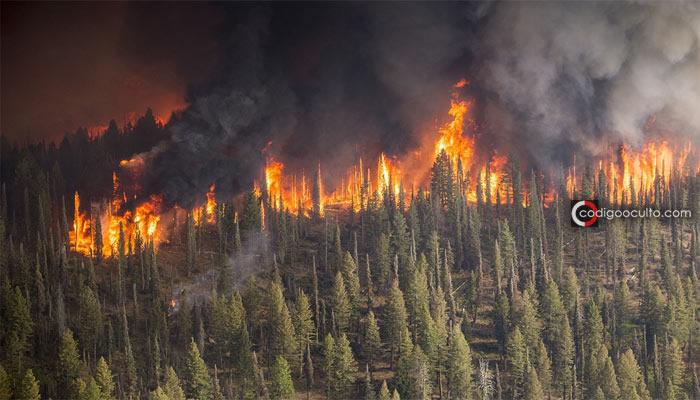 Grandes incendios forestales