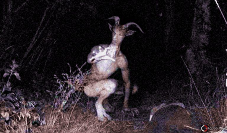 ¿Qué son los Skin Walker? historias de «cambiapieles» navajos (vídeo)
