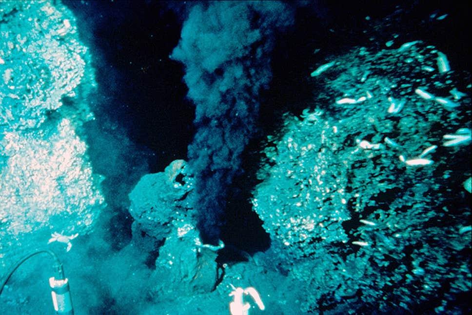 Un respiradero hidrotermal en el Pacífico oriental