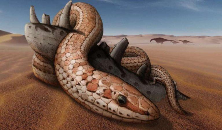 Descubren una serpiente de hace 100 millones de años con extremidades posteriores