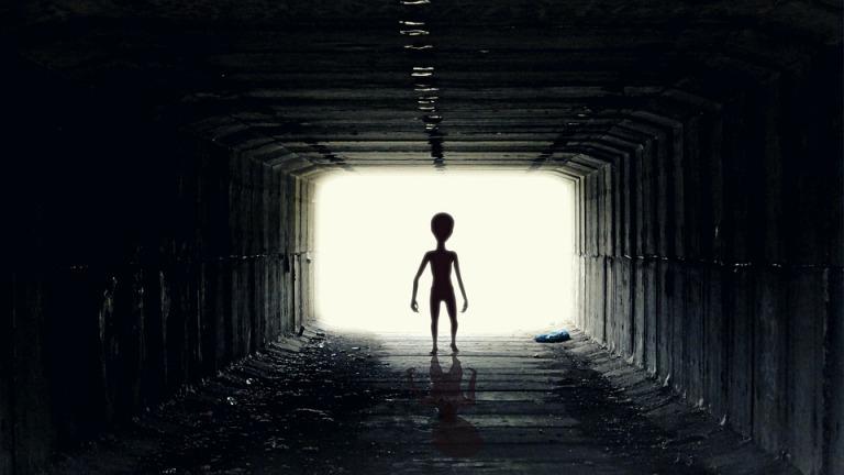 Se ha propuesto la hipótesis alien para explicar este caso