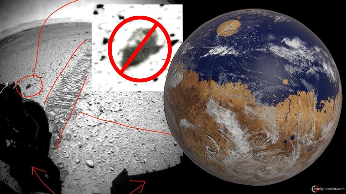 Universidad de Ohio elimina investigación que revelaba insectos en Marte