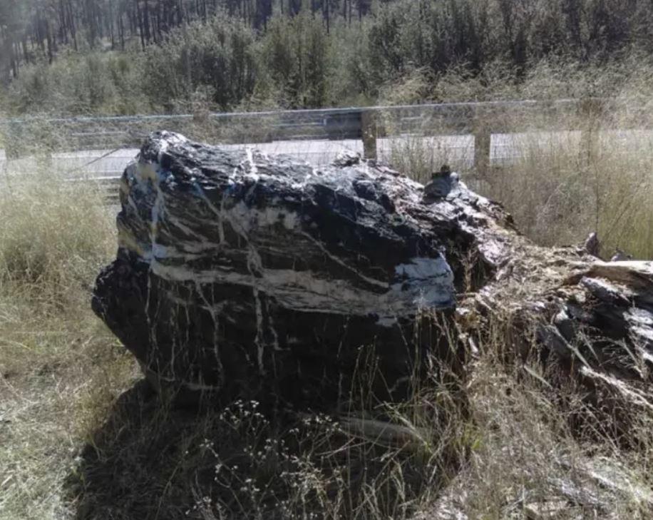 La roca conocida como «Wizard Rock» en Prescott National Forest, Arizona