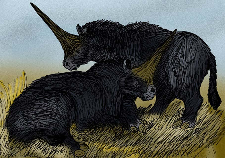Unicornio siberiano: la legendaria criatura que realmente existió