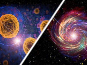 Al morir las células del cuerpo emiten luz ¡como las supernovas!