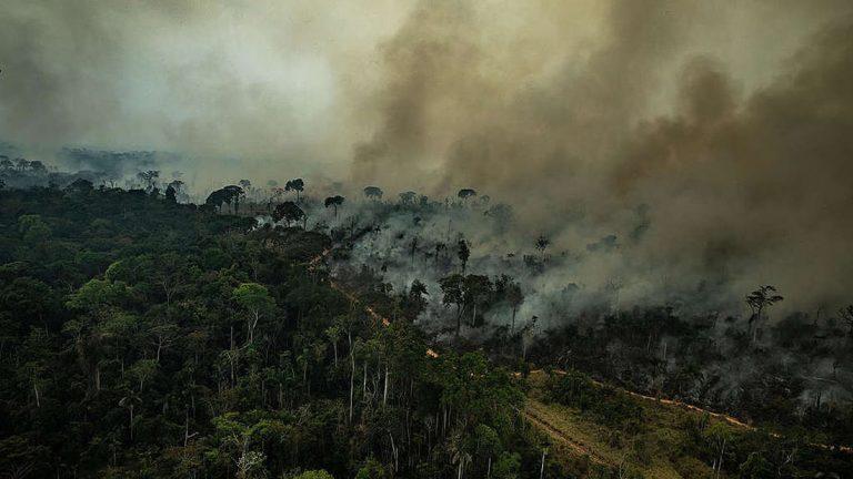 Posible aumento repentino de incendios en Amazonía enciende las alarmas