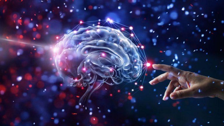 Científicos descubren un nuevo tipo de señal en el cerebro humano