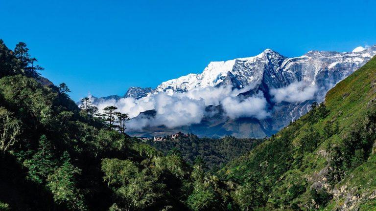 Plantas están creciendo más arriba en el Monte Everest e Himalaya que en el pasado