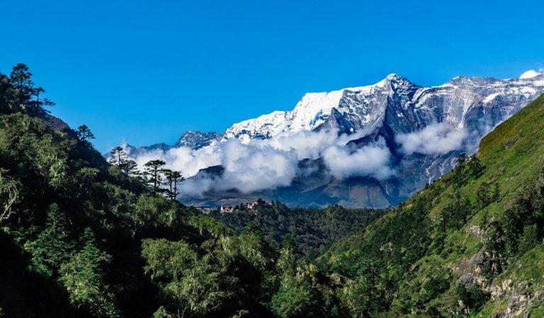 Plantas están creciendo más arriba en Monte Everest e Himalaya que en el pasado