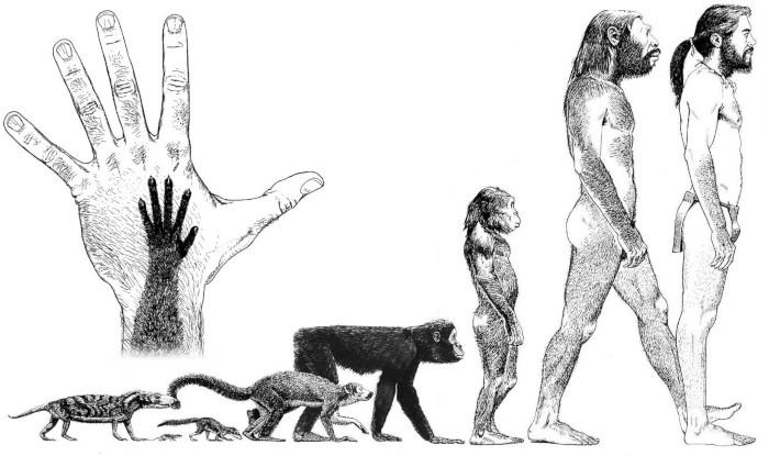 ¿Evolución o intervención alienígena? Sobre el repentino desarrollo del primer ser humano