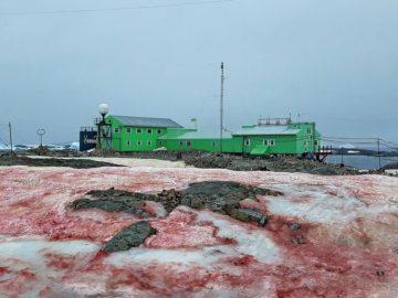 Cae nieve roja sobre la Antártida
