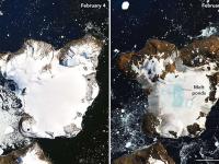 Glaciares de la Antártida se derriten luego del día más caluroso registrado