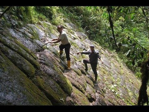 Pirámides en Venezuela: origen e historia oculta