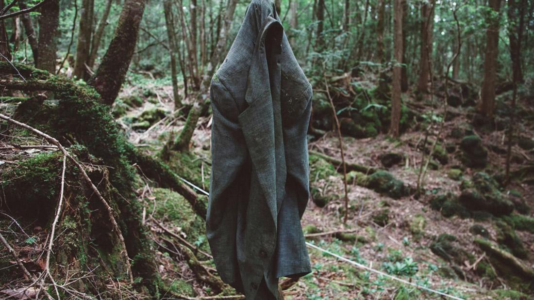 Los Bosques más tenebrosos del mundo – Actividad Paranormal al extremo
