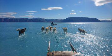 Groenlandia perdió 600 mil millones de toneladas de hielo durante el verano pasado