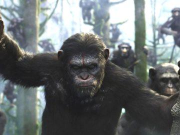 ¿Qué especies dominarían la Tierra si los humanos se extinguen?