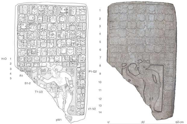 Reino maya antiguo es descubierto en patio trasero de ganadero en México
