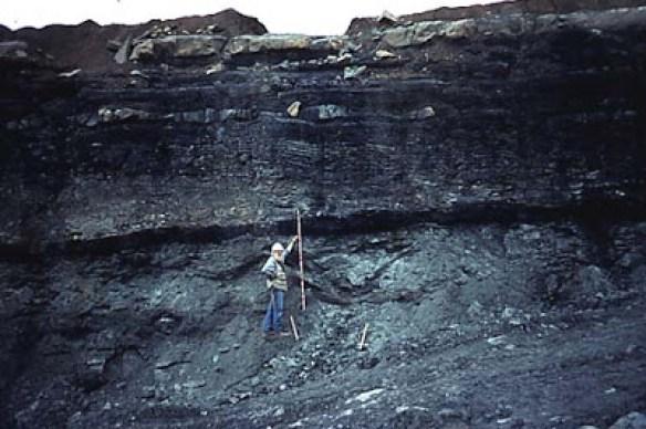 Broca hallada en carbón podría sugerir la existencia de una civilización avanzada hace millones de años