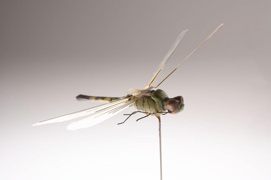 La CIA tenía «drones insecto» en la década de 1970. Entonces, ¿qué tienen hoy? (Vídeo)