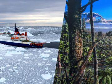 Científicos descubren rastros de una antigua selva tropical en la Antártida