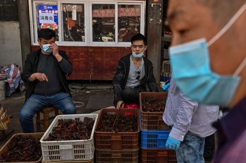 Mercado en Indonesia continúa vendiendo murciélagos, ratas, perros, gatos y animales exóticos, a pesar de todo