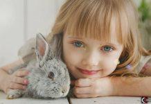 Los niños que crecen con mascotas son adultos más sensibles, comprensivos y exitosos