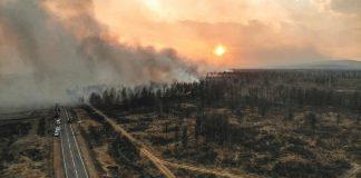 Siberia está siendo arrasada por incendios forestales en este momento