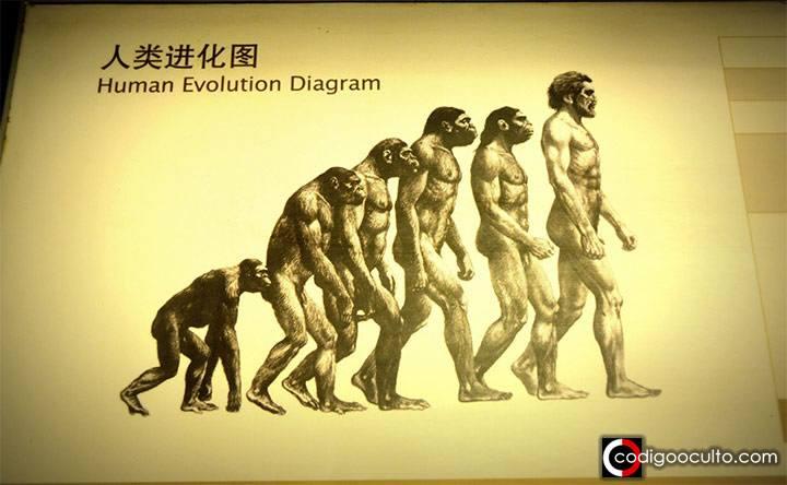 ¿Se extinguirán los humanos? A pesar de todo, probablemente sobrevivamos por mucho tiempo