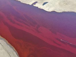 22.000 toneladas de petróleo se derraman en el Círculo Polar Ártico. Rusia declara emergencia