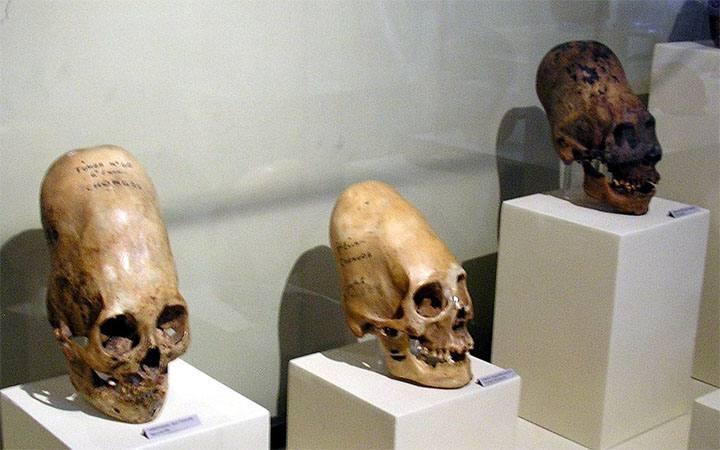 Homo-Capensis: ¿una especie que vive oculta entre la humanidad?