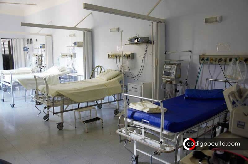 Descubren nuevo hongo híbrido en hospitales y se relaciona con la enfermedad pulmonar