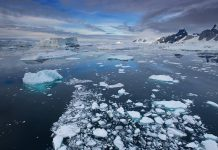Polo Sur se calienta tres veces más rápido que el resto del planeta