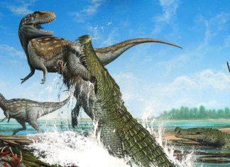 El Cocodrilo del terror del Cretácico que destrozaba dinosaurios con sus enormes dientes