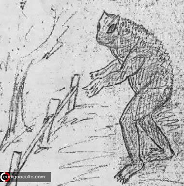 El hombre-rana de Loveland, Ohio: un críptido híbrido y su enigma no resuelto