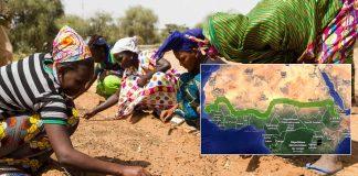 La Gran Muralla Verde de África: ¿la próxima maravilla del mundo?