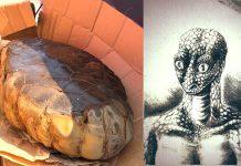 «Huevo alienígena reptil» hallado en Arkansas desata intenso debate
