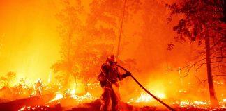 Catástrofe ambiental: 810.000 hectáreas de bosques destruidas por incendios forestales en California