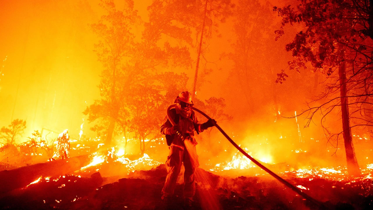 Catástrofe ambiental: 810.000 hectáreas de bosques destruidos por incendios forestales en California