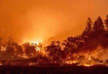 Incendios forestales siguen arrasando California. Miles tienen que evacuar.
