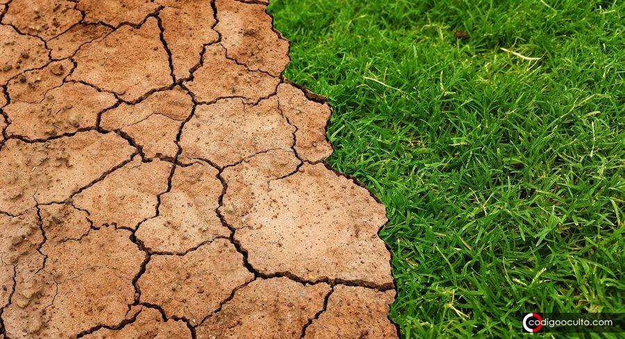 «Nos enfrentamos a una sexta extinción masiva» advierte científico David Attenborough