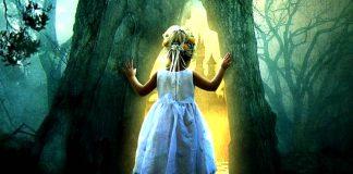 La supervivencia del alma a la muerte física: el misterio de las regresiones