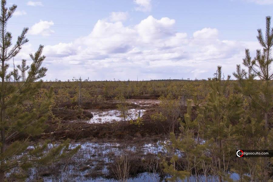 Testigo: «Vi como si la Tierra respirara»... antes de formarse un enorme cráter en Siberia