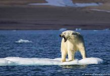 Por primera vez, el hielo marino del Ártico no ha vuelto a congelarse a finales de octubre