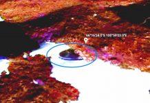 Derretimiento del hielo en la Antártida revela un misterioso «objeto antiguo»