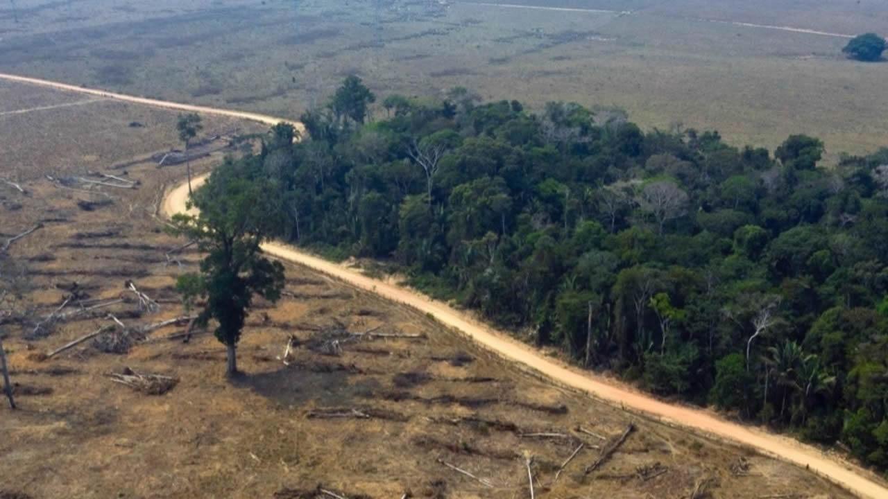 Preocupante informe sugiere que 1 de cada 5 países se encamina al colapso del ecosistema