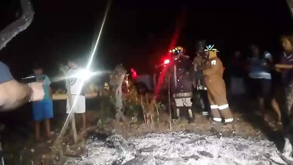 Meteorito cae en Tamaulipas (México) dejando arbustos y árboles quemados