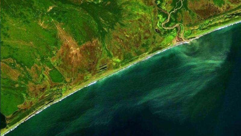 Marea tóxica acaba con la vida marina en la península de Kamchatka en Rusia. Temores de desastre ecológico