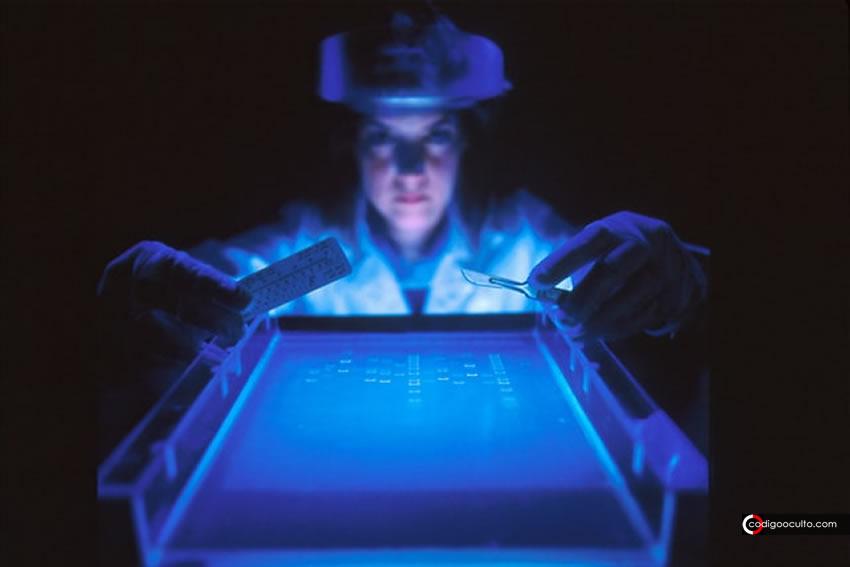 ADN fantasma: cómo un científico ruso intentó demostrar la existencia del alma