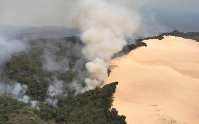Incendios forestales en Australia arrasan isla declarada patrimonio