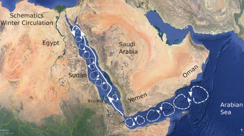 Un catastrófico derrame de petróleo podría ocurrir en el Mar Rojo en cualquier momento